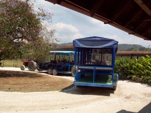 YS Falls - Scenic Tractor Ride