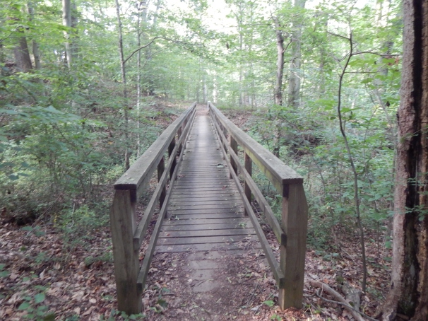 Brandywine Creek State Park Trail Bridge