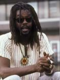 Peter Tosh, The Murder of Peter Tosh, Who Killed Peter Tosh?