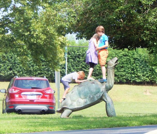 Kids Climb Turtle