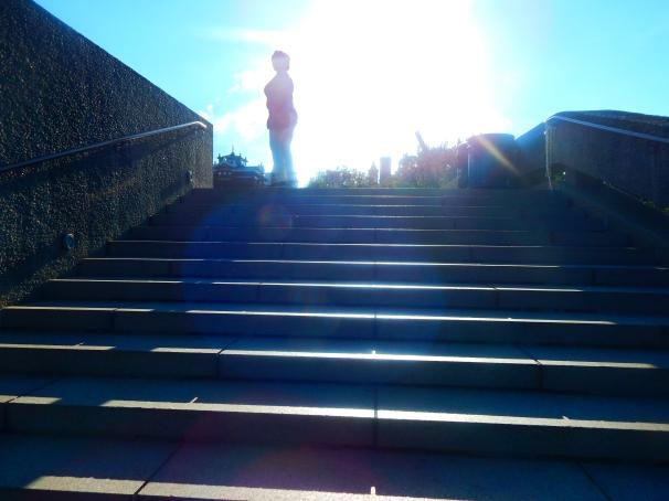 Hirshhorn Museum Sculpture Garden Step