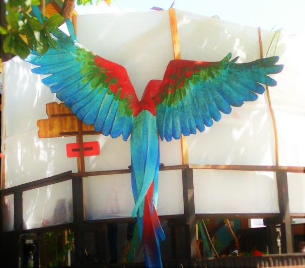 Margaritaville Parrot