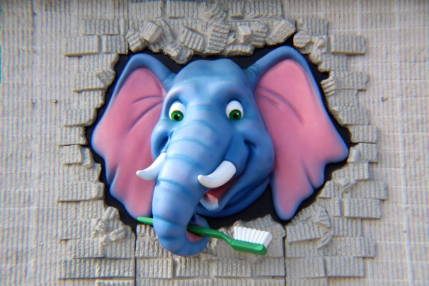 Elephant with Toothbrush