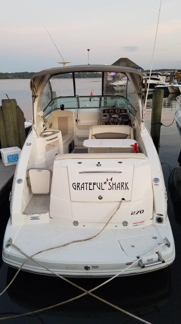 Grateful Shark