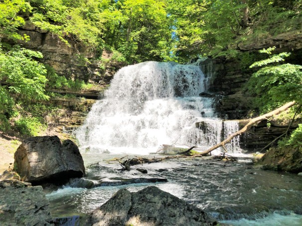 Lower Decew Falls [Landscape View]